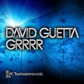 Grrrr by David Guetta