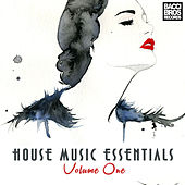 House Music Essentials - Vol. 1 by Various Artists