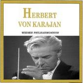 Herbert Von Karajan - Wiener Philharmoniker von Wiener Philharmoniker