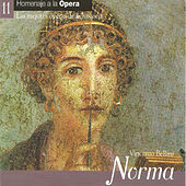 Norma - Vincenzo Bellini von Various Artists