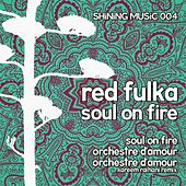 Soul On Fire by Red Fulka