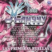 La Primeras Huellas de Banda Maguey