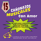 15 Canonazos Musicales Con Amor by Various Artists