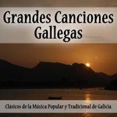 Grandes Canciones Gallegas: Clásicos de la Música Popular y Tradicional de Galicia by Various Artists