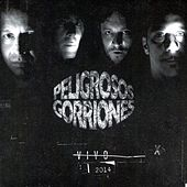 Peligrosos Gorriones by Peligrosos Gorriones