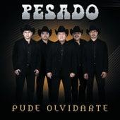 Pude Olvidarte by Pesado