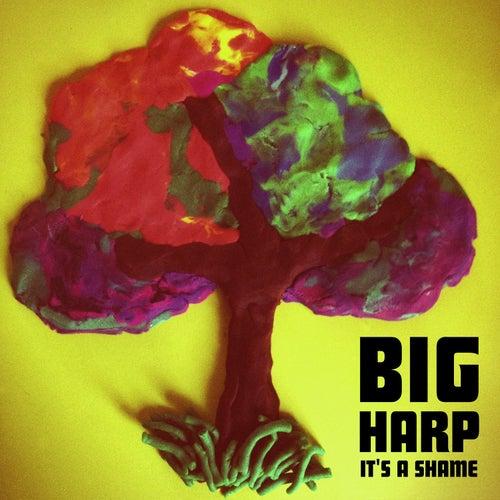 It's a Shame / He's a Girl, She's a Flame by Big Harp