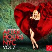 Afterhours Nyc, Vol. 7 de Various Artists