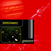 LIVE [in Spaceland - June 13th, 2007] de White Rabbits