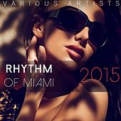 Rhythm of Miami 2015 by Various Artists