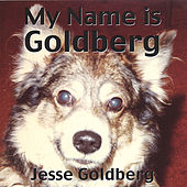 My Name Is Goldberg by Jesse Goldberg