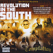 Revolution in the South de Various Artists