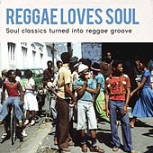 Reggae Loves Soul by Various Artists