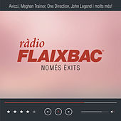 Flaixbac 2015 de Various Artists