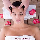 Wellness & Spa, Vol. 2 (Relax Your Mind) by Various Artists