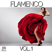 Flamenco Vol. 1 by Various Artists