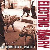 The Definition of Insanity by Electric Mary