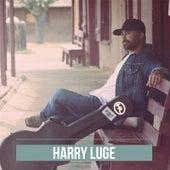 Harry Luge by Harry Luge