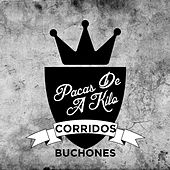 Pacas de a Kilo: Corridos Buchones by Various Artists