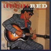 Sittin' Here Wonderin' by Louisiana Red