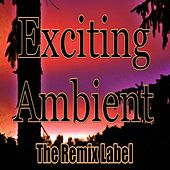 Exciting Ambient (Progressive Chillout Music Album Plus Bonus Megamix) von Deepient
