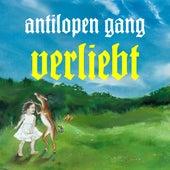 Verliebt von Antilopen Gang