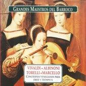 Grandes Maestros del Barroco by Various Artists