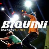 Ao Vivo - Músicas Extras do Dvd - Single von Biquini Cavadão