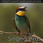 Singing Birds Sound by Tmsoft's White Noise Sleep Sounds