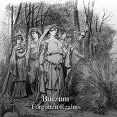Forgotten Realm by Burzum