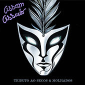 Assim Assado - Tributo Ao Secos e Molhados by Various Artists