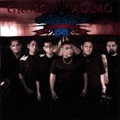 Reel Music by Grupo Alamo