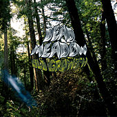 Old Growth de Dead Meadow