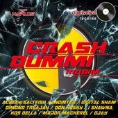 Crash Dummi Riddim von Various Artists