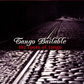 Tango Bailable Vol 1: The Roots Of Tango by Orquesta Típica De Buenos Aires