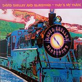 That's My Train by David Shelley