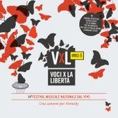 VxL: Voci per la Libertà 2011 (Una canzone per Amnesty) di Various Artists