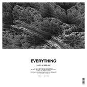 Everything de AN21