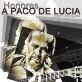 Homenaje a Paco de Lucia de Various Artists