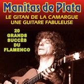 20 Grands Succes Du Flamenco di Manitas de Plata