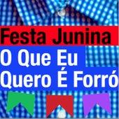 Festa Junina - O Que Eu Quero É Forró de Various Artists