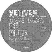 You May Be Blue/Been So Long (Neighbors Remixes) by Vetiver