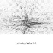 Principles of Techno, Vol. 13 de Various Artists