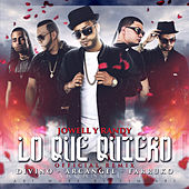 Lo Que Quiero (Remix) [feat. Arcangel, Farruko & Divino] - Single de Jowell & Randy