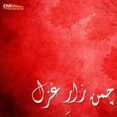 Chaman Zar-E-Ghazal by Various Artists