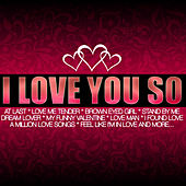 I Love You So von Various Artists