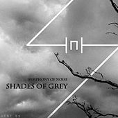 Shades of Grey by Symphony of Noise