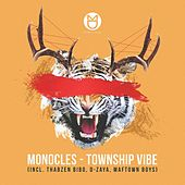 Township Vibe - Single by Various Artists
