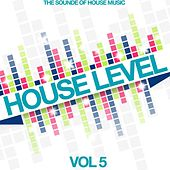 House Level, Vol. 5 (The Sound of House Music) by Various Artists