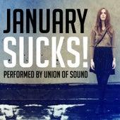 January Sucks! by Union Of Sound